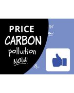 Price Carbon Pollution Now Thumbs Up Sticker - 3X5 - Black