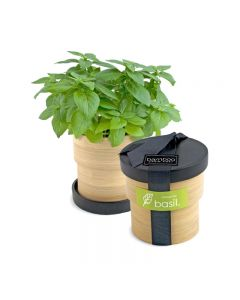 Basil Bamboo Grow Pot