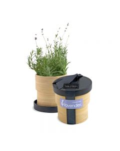 Lavender Bamboo Grow Pot