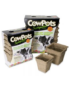 Cowpots Biodegradable Seedling Planters Square Size 3 12 Pack