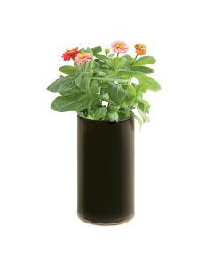 Flower Demi Grow Bottle