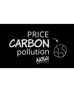 Price Carbon Pollution Now Sticker - 3X5 - Black