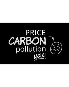 Price Carbon Pollution Now Sticker - 3X5 - Black