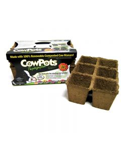 Cowpots Biodegradable Seedling Planters Size 3 Cells 12 Pack