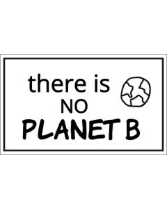 There is No Planet B Sticker - 3X5 - White